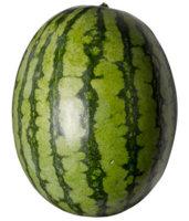 ttar_watermelon_01_v_launch.jpg